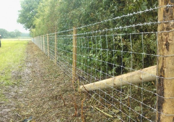Stock Fence Wire And Netting